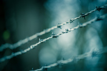 Lines Of Barbed Wire To Demarc...