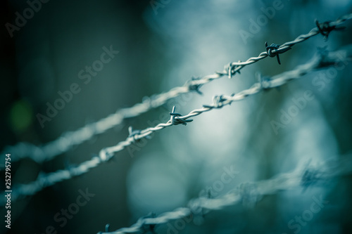 Cuadros en Lienzo  Lines of barbed wire to demarcate the border