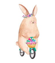 Cute Watercolor Rabbit Riding ...