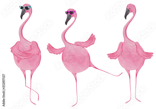 Akwarela zestaw flamingów