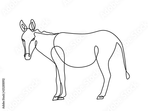 Fototapeta donkey one line drawing