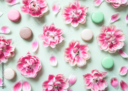 Blooming tulips and colorful macaron cakes on pastel green background.
