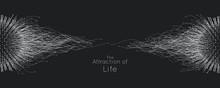 Attraction Of Life. Vector Con...