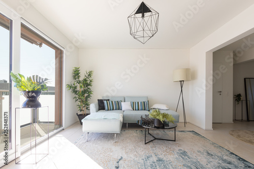 Fotografie, Obraz  Modern living room with designer sofa and coffee table