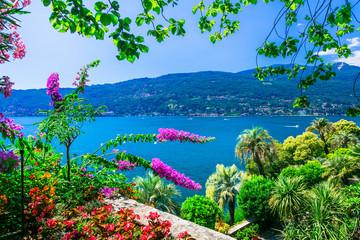 Fototapetascenic lake Lago Maggiore -