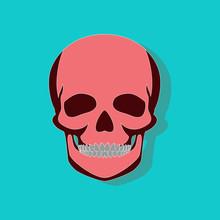 Human Skull Paper Sticker On S...