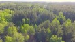 Beautiful panoramic Aerial view on forest. From above. Picture taken using drone