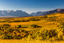 Farmers Fields In The Shadow Of The Rockies, Municipal District Of Pincher Creek, Alberta, Canada