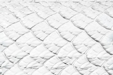 White Dragon Scale Texture For Background