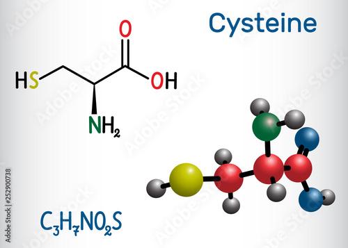 Cysteine  (L-cysteine, Cys, C) proteinogenic amino acid molecule Canvas Print