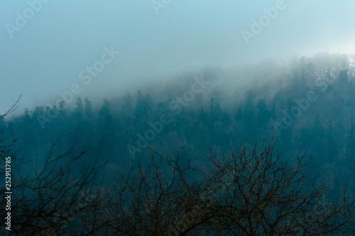Valokuva  Beautiful landscape of the Ukrainian mountain village during fog