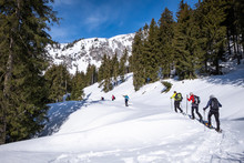 Adults Snowshoeing Thruogh For...