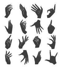 Woman Hands Gestures Silhouettes