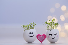 Two Eggshells Smiley Faces Wit...