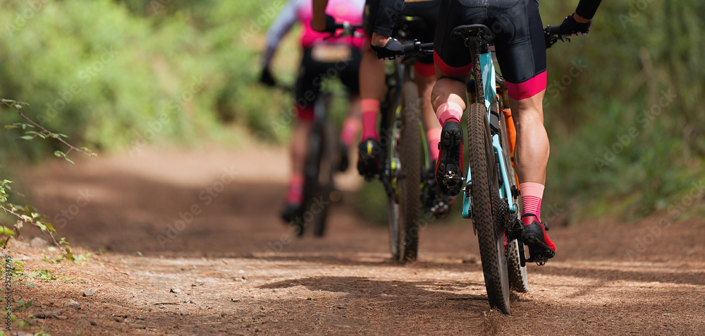Fototapety, obrazy: Group of athletes mountain biking on forest trail, mountain bike race