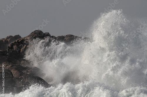 Fotografie, Obraz  Sunny rough sea on the cliffs