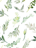 Wzór z liści i roślin - 253015135