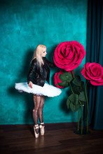 Ballerina Concept. Dark Interi...