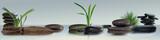 Fototapeta Kamienie - Wandbild mit Gräser, Schmucksteine und Wasser
