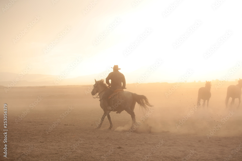 Fototapety, obrazy: wild horses and cowboys.kayseri turkey