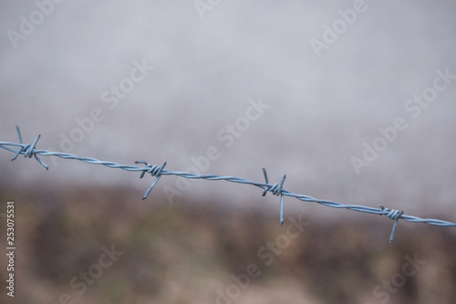 Fotografía  Close up of sharp barbed metal wire.