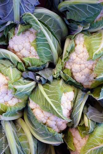 Fotografie, Obraz  Fresh organic white cauliflower at a farmers market