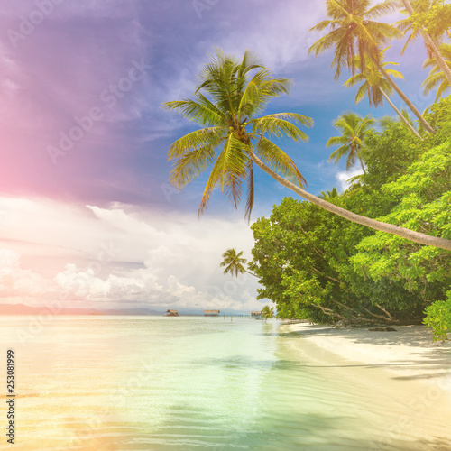 Idillyc background of tropical island beach - calm ocean, palm trees, blue sky