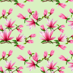 Illustration of a pattern with magnolia on a colored background.