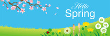 """Cherry Blossom Branch And Wildflowers In The Spring Grassland, Including Words """"Hello Spring"""" -Header Ratio"""