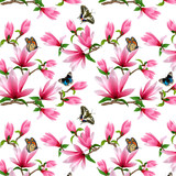 Pattern with magnolia and butterflies in illustration.