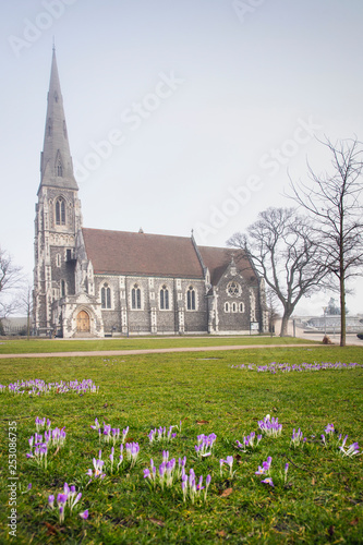 view to old church through meadow with spring flowers in Copenhagen in Denmark Canvas Print
