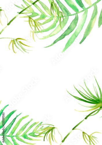 zielone-liscie-stylizowane-na-rysunek-akwarela
