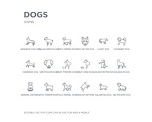 Simple Set Of Dogs Vector Line Icons. Contains Such Icons As Dachshund Dog, Dalmatian Dog, English Setters Dog, Field Spaniel Fox Terrier German Shepards Goldador Golden Retriever Great Dane And