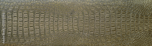Photo crocodile skin