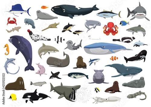 Various Cute Sea Animals Cartoon Vector Illustration Fototapete