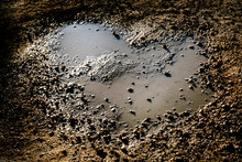 Heart Shaped Puddle In Gravel
