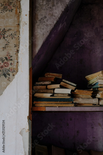 Peeling Wallpaper And Old Books In An Abandoned House Buy