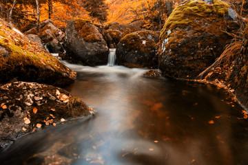 strumień jesienią