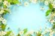 Leinwandbild Motiv Beautiful spring nature background with lovely blossom, petal a on turquoise blue background , top view, frame. Springtime concept.