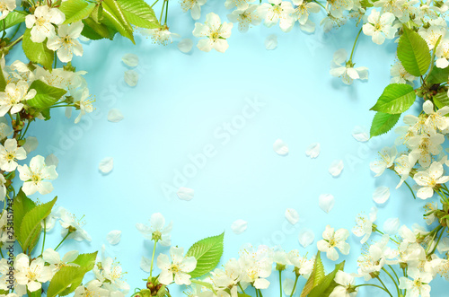 Garden Poster Spring Beautiful spring nature background with lovely blossom, petal a on turquoise blue background , top view, frame. Springtime concept.
