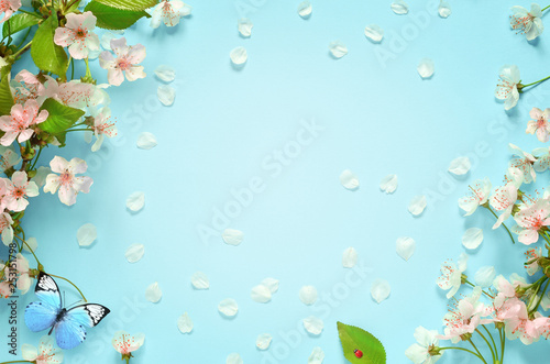 Poster Printemps Beautiful spring nature background with butterfly, lovely blossom, petal a on turquoise blue background , top view, frame. Springtime concept.