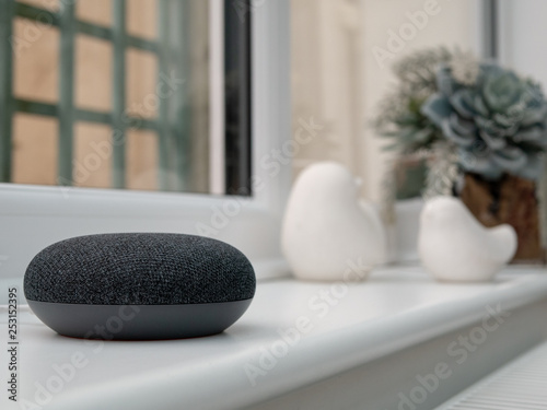 smart home bluetooth speaker device in home setting Canvas Print