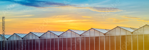 Large Industrial Greenhouse at Sunset Wallpaper Mural