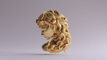 Antique Gold Medusa Bas Relief...