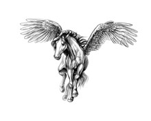 Pegasus Mythical Winged Horse....