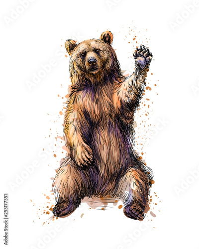 Friendly brown bear sitting and waving a paw from a splash of watercolor Fototapet