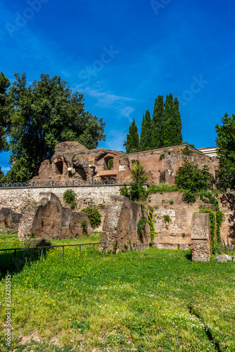 Deurstickers Rudnes The ancient ruins at the Roman Forum in Rome