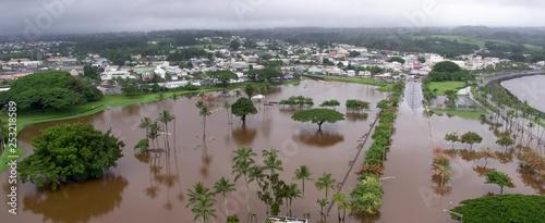 Obraz na plátně Flooded Park by the Pacific Ocean