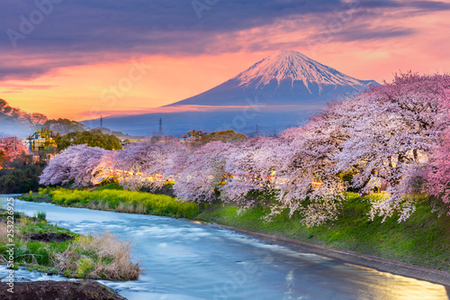 Mountain fuji in cherry blossom season during sunset. Canvas-taulu