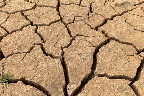 Fotografía  Cracked dry land without water.Abstract background
